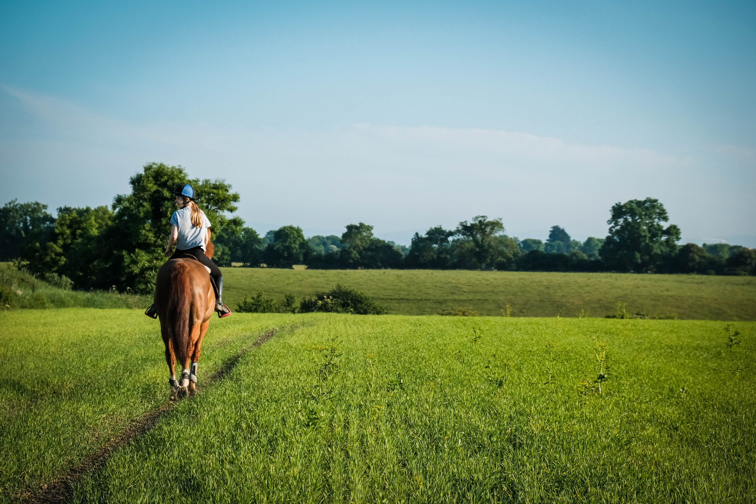 Girl horse riding in field