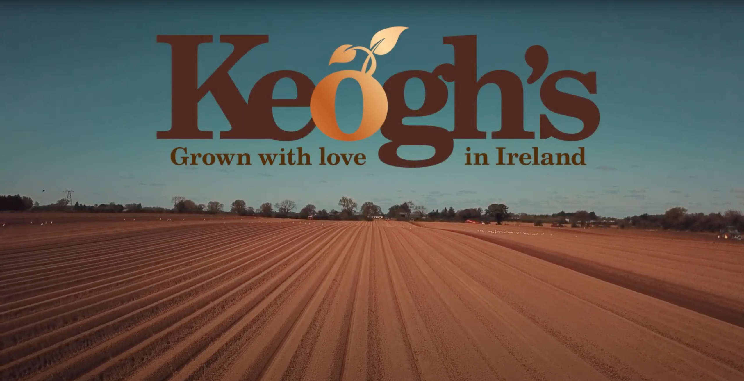 Keoghs Planting