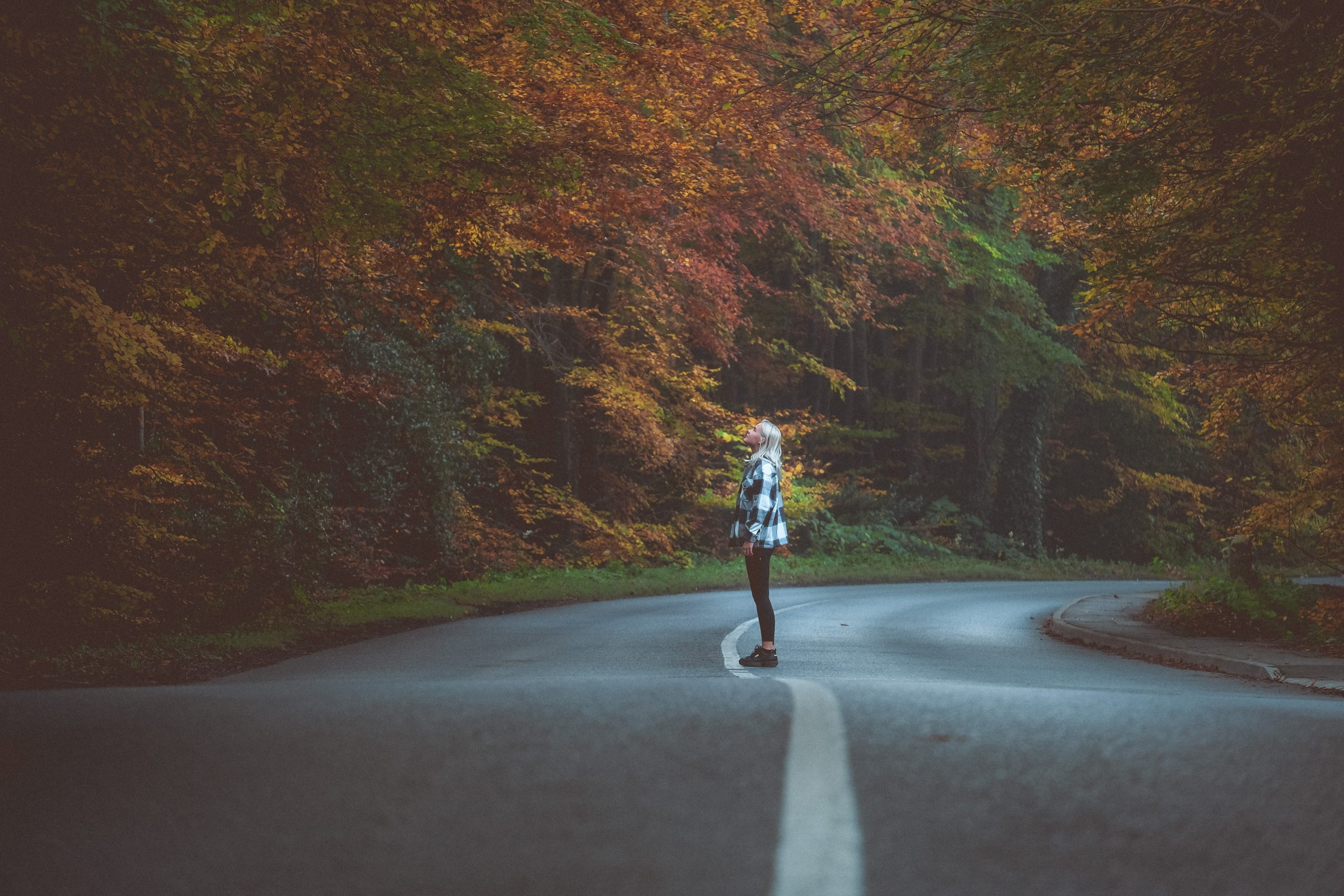 autumn-roads-dublin-fiona-madden-photography
