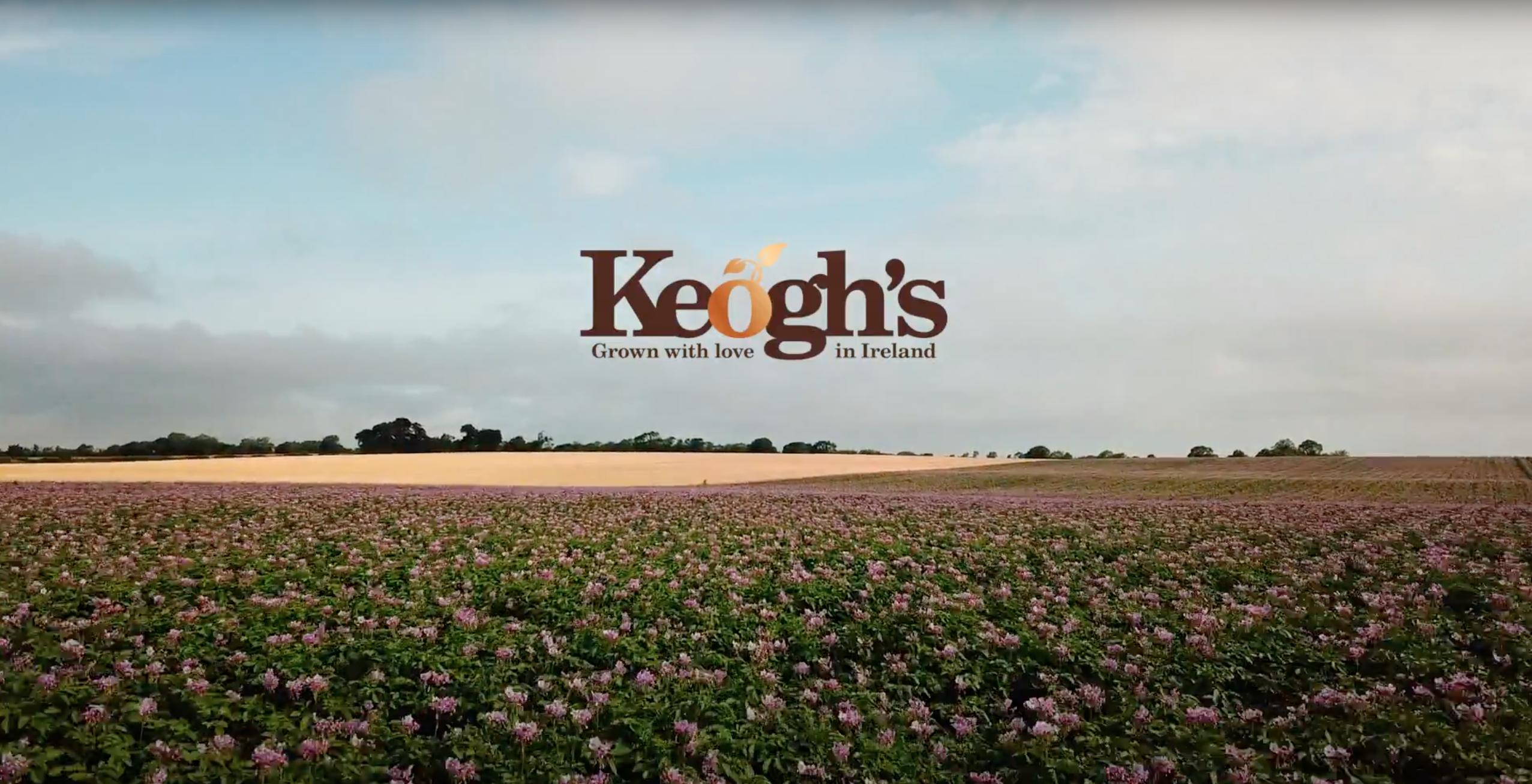 In bloom keoghs