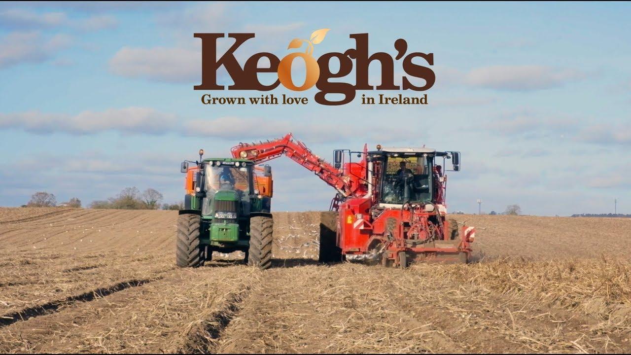 keogh harvesting
