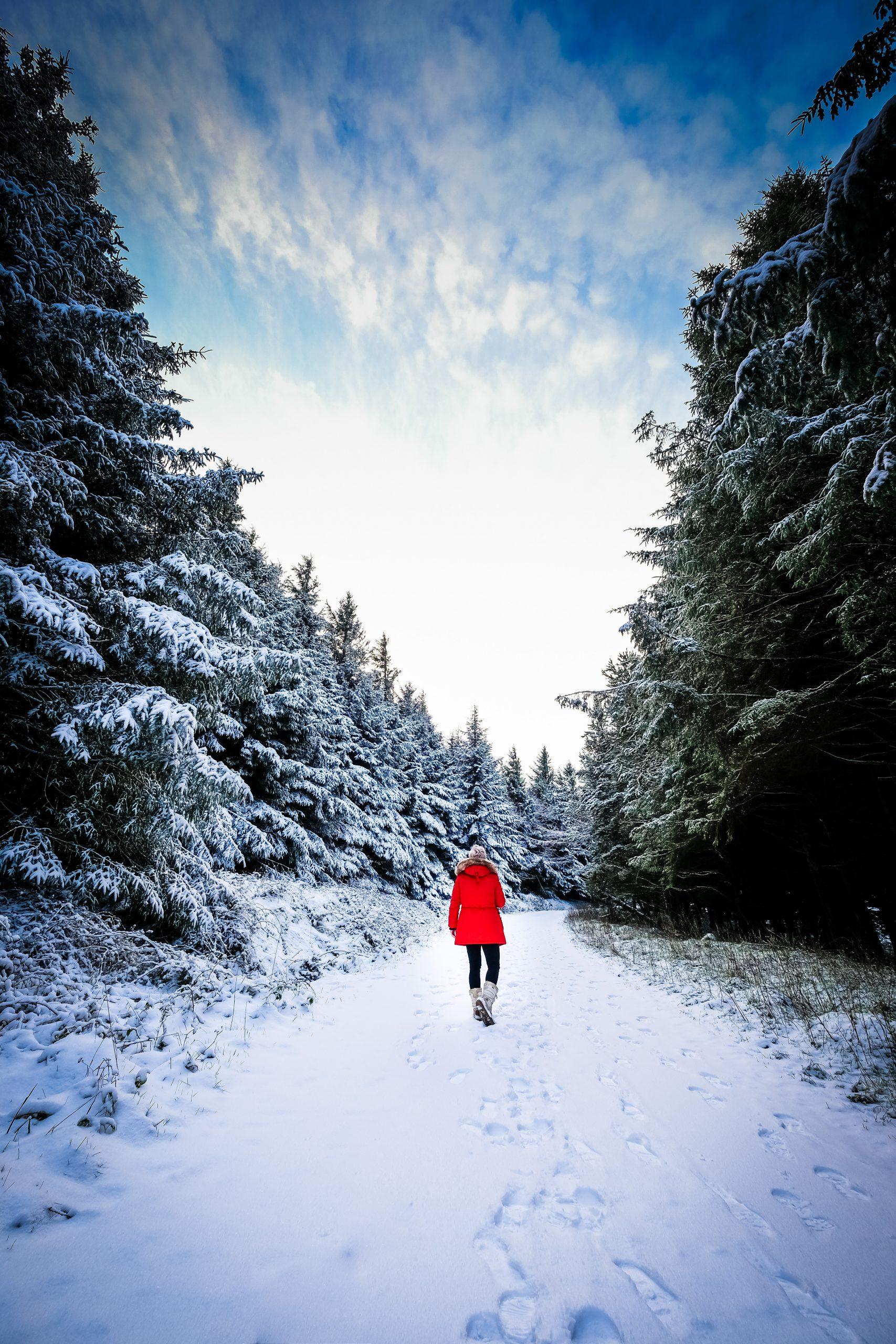 snow-ticknock-fiona-madden-photography